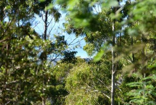 1, . Elephant Pass Road, St Marys, Tas 7215