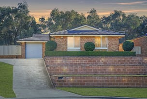 36 Traminer Place, Minchinbury, NSW 2770