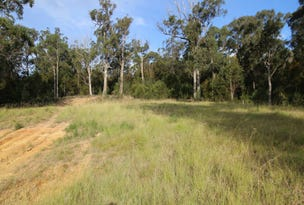 L11 The Wanderer, Boydtown, NSW 2551