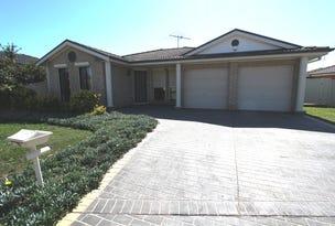 13 Pentacost Street, Hinchinbrook, NSW 2168