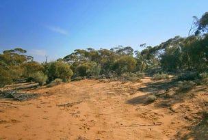 18 Murbko Road, Morgan, SA 5320