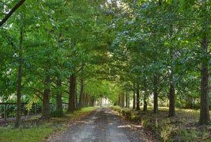 63 Bloodtree Road, Mangrove Mountain, NSW 2250