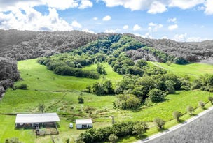 Lot 4 & 5 Davidson Road, Whyanbeel, Qld 4873