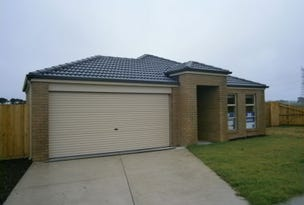 19 Horatio Court, Portland, Vic 3305
