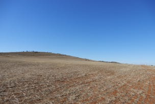 Lot 2 Bouda Hut Road, Tarcowie, SA 5431