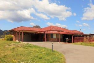 109 Sandy Creek Road, Mount Vincent, NSW 2323