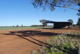 1 Cnr Cains Lane And Jerricks Lane, Coolamon, NSW 2701