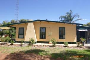 19 Foster Rd, Waikerie, SA 5330