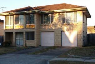 38 Dennistoun Street, Sunnybank Hills, Qld 4109