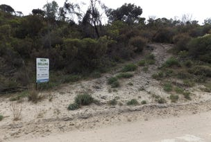 Lot 196, Island Beach Road, Island Beach, SA 5222
