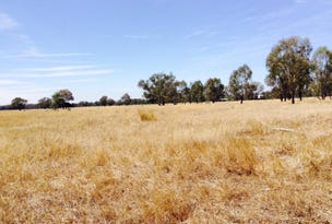 Lot 1, Baddaginie-Benalla Road, Baddaginnie, Vic 3670