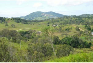 Lot 81, 56  Carranya Rd, Habana, Qld 4740