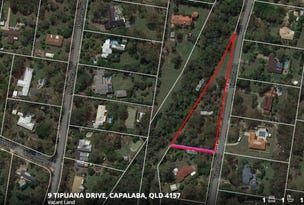 9 Tipuana Drive, Capalaba, Qld 4157