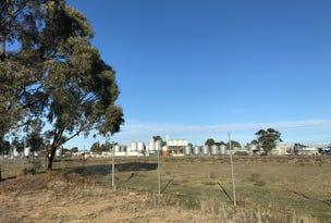 67 Moulamein Road, Barham, NSW 2732