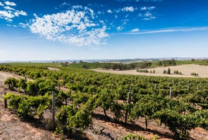 Schobers Estate Vineyard, Main North Road, Leasingham, SA 5452