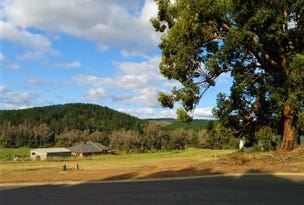 Lot 509 McAlpine Mews, Nannup, WA 6275