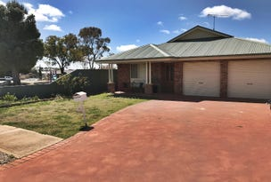 1 Lady Mary Drive, West Wyalong, NSW 2671