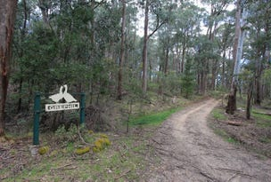 Lot 4 Tooma Road, Tumbarumba, NSW 2653