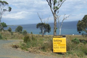 Lot 2 White Beach Road, White Beach, Tas 7184
