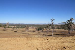 Lot 15,16 Burundah Mountain Estate, Warialda, NSW 2402