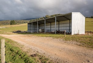 67 Crowdens Road, Western Creek, Tas 7304
