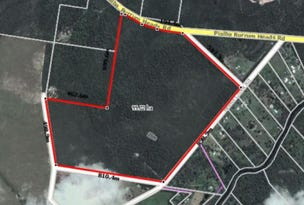 Lot 113, 140 Beelbi Creek Road, Beelbi Creek, Qld 4659