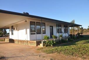 49 Ohlmeyer Road, Waikerie, SA 5330