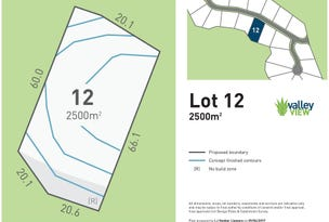 Lot 12 Valley View Estate, Richmond Hill Rd, Goonellabah, NSW 2480
