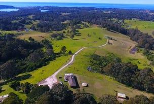 198 Wagonga Scenic Drive, Narooma, NSW 2546
