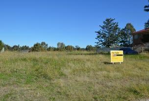 23 Monterey Road, Singleton, NSW 2330