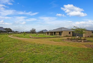 134 Bellicourt Road, Dunkeld, Vic 3294