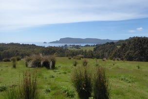 0 'Murrayville'  McPhersons Road, Adventure Bay, Tas 7150