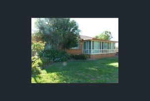 17 Belah Street, Forbes, NSW 2871
