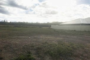 Lot 434 Drover Street, Wauchope, NSW 2446