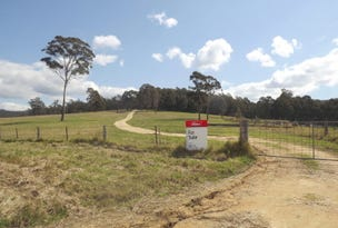585 West Cann Road, Cann River, Vic 3890