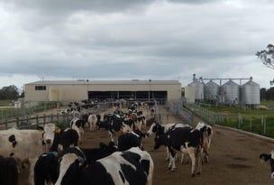 Acacia Downs Dairy, Cadgee Road, Naracoorte, SA 5271
