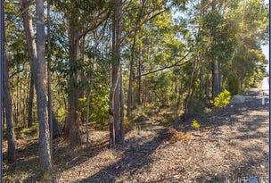 Lot 101 Clyde Road, Batemans Bay, NSW 2536