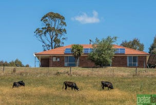 2238 Deddington Road, Blessington, Tas 7212