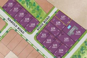 Lot 127 Rosie Road, Raymond Terrace, NSW 2324
