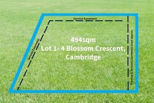 Lot 1 - 4 Blossom Court, Cambridge, Tas 7170