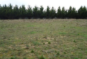 Lot 103 Manor Hills off Surry Street, Collector, NSW 2581