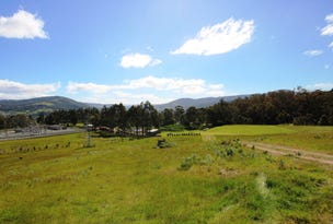 35 Snowy View Heights, Huonville, Tas 7109