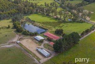 464 Long Plains Road, Bridgenorth, Tas 7277