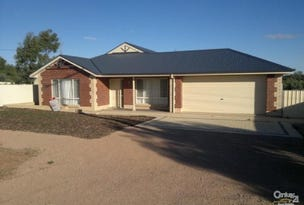 23 Third Street, Napperby, SA 5540