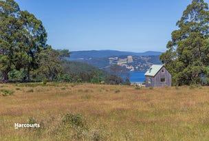 RA Harwoods Road, Castle Forbes Bay, Tas 7116