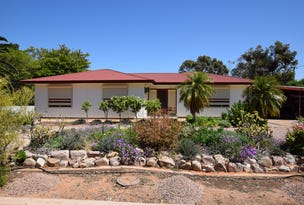 5 Willoughby Street, Stirling North, SA 5710