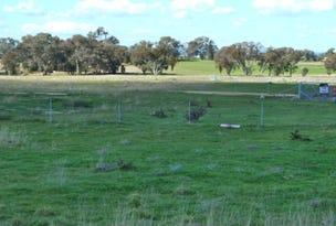* Foys Drive, Molong, NSW 2866
