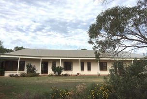 418 Hall Road, Waggrakine, WA 6530