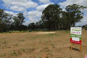 Lot 1001 Kingsbarns Terrace, Cessnock, NSW 2325
