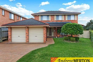 9 Mannix Place, Quakers Hill, NSW 2763
